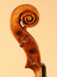 Schnecke der Stradivari